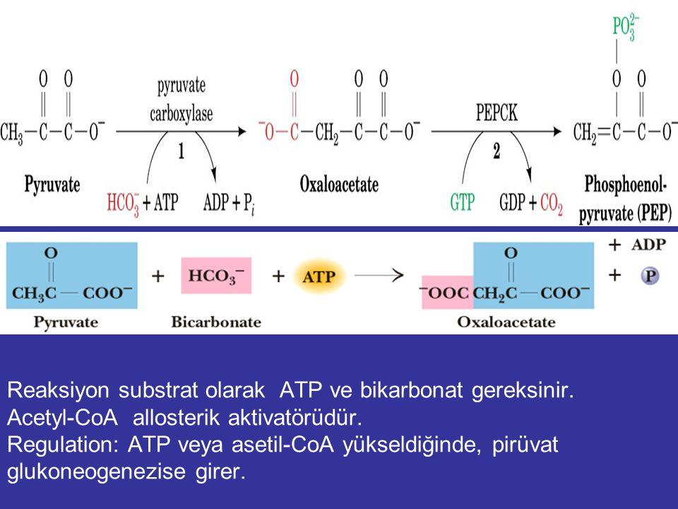Reaksiyon substrat olarak ATP ve bikarbonat gereksinir
