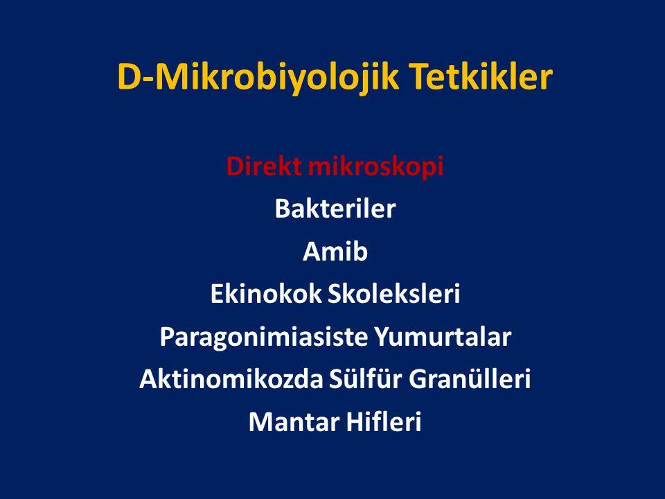 D-Mikrobiyolojik Tetkikler