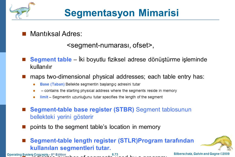 Segmentasyon Mimarisi