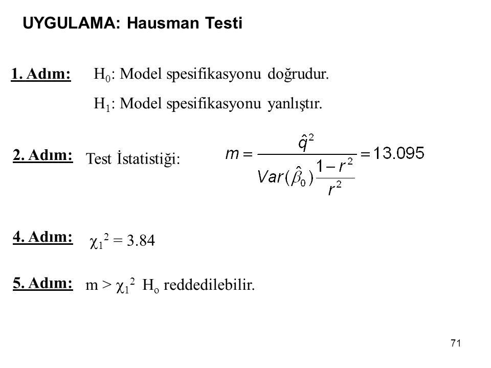 UYGULAMA: Hausman Testi