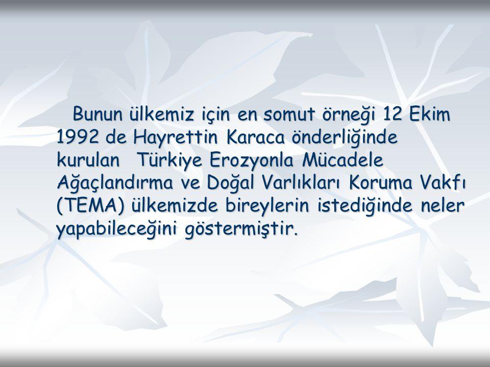 Bunun ülkemiz için en somut örneği 12 Ekim 1992 de Hayrettin Karaca önderliğinde kurulan Türkiye Erozyonla Mücadele Ağaçlandırma ve Doğal Varlıkları Koruma Vakfı (TEMA) ülkemizde bireylerin istediğinde neler yapabileceğini göstermiştir.