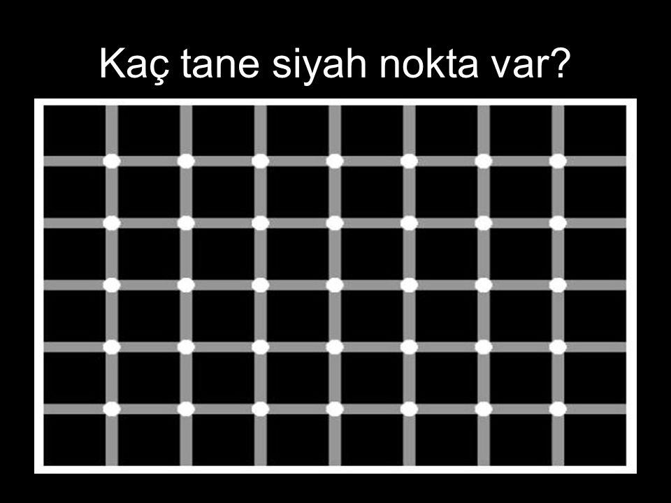 Kaç tane siyah nokta var
