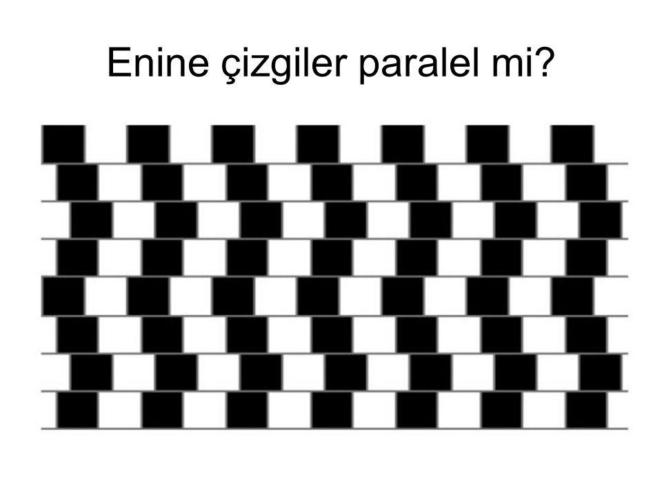 Enine çizgiler paralel mi
