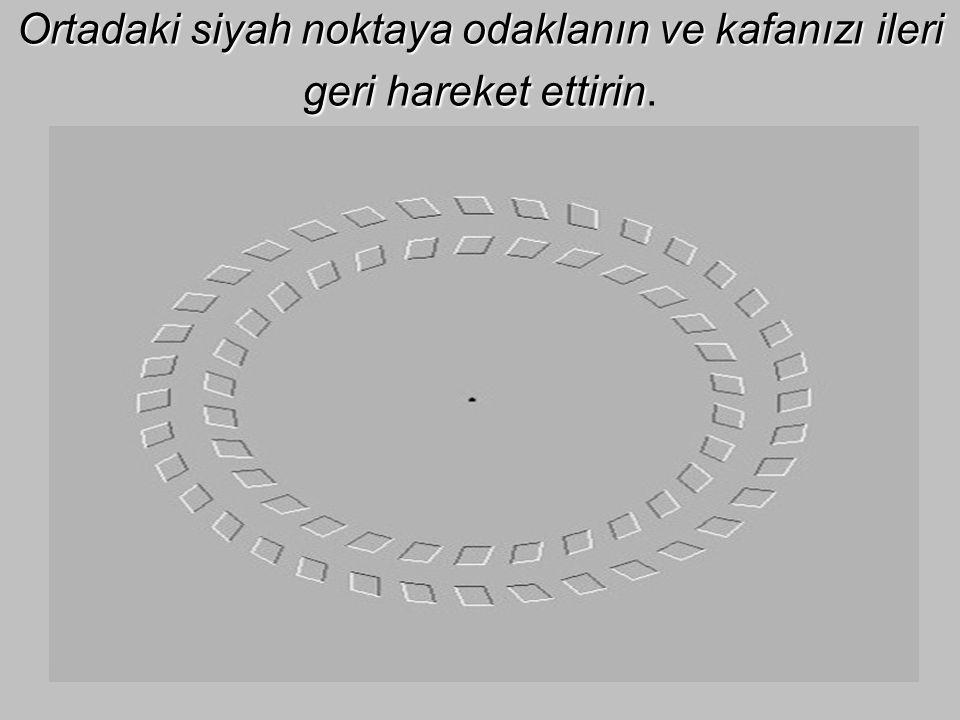 Ortadaki siyah noktaya odaklanın ve kafanızı ileri geri hareket ettirin.