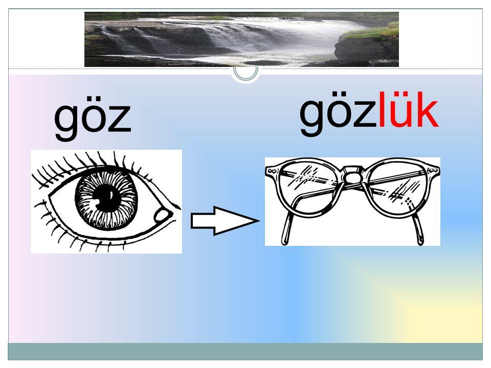 gözlük göz