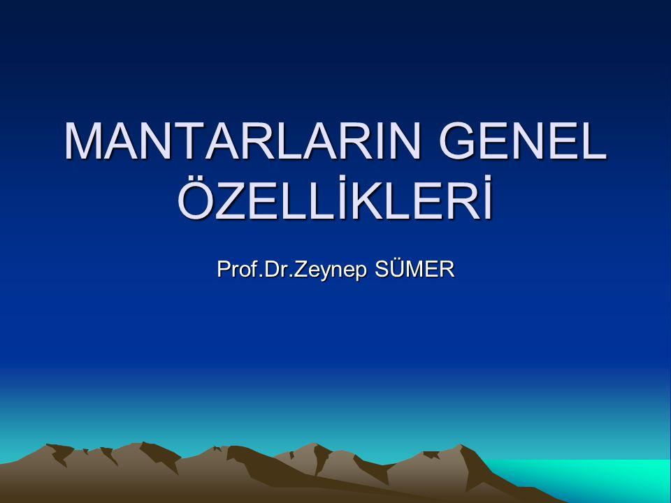 MANTARLARIN GENEL ÖZELLİKLERİ