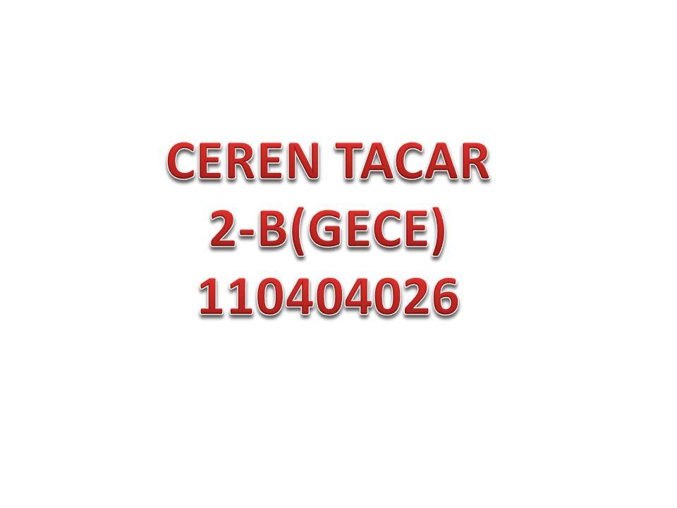 CEREN TACAR 2-B(GECE) 110404026