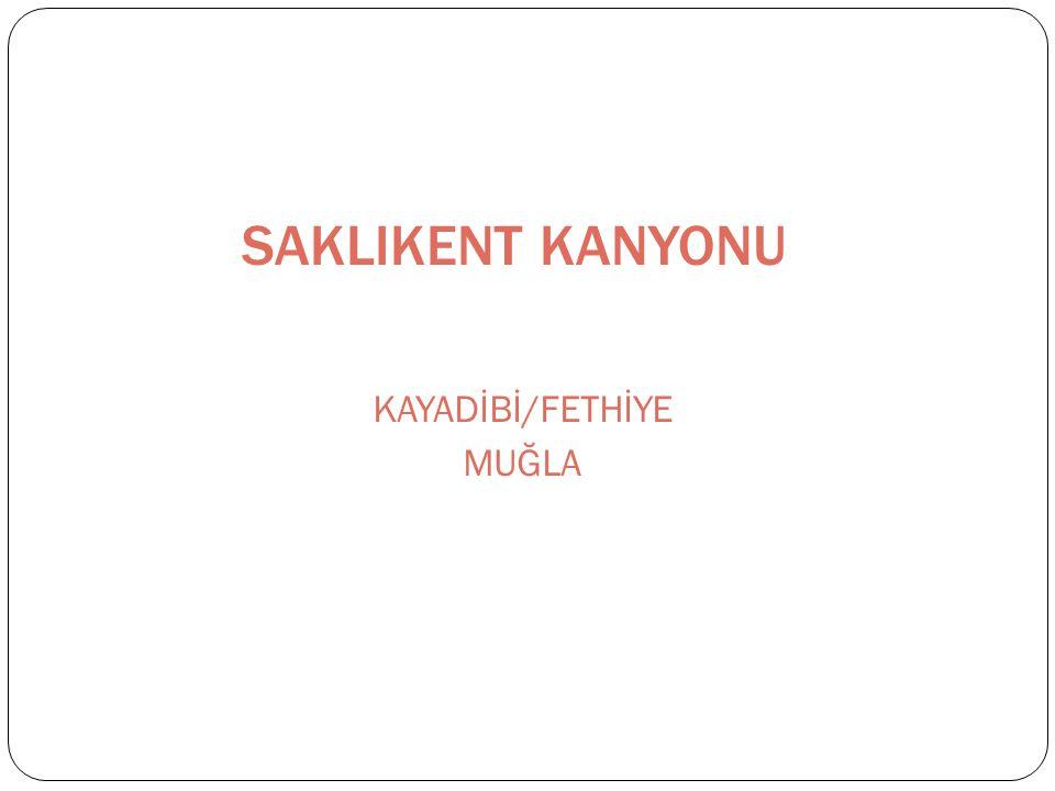 KAYADİBİ/FETHİYE MUĞLA
