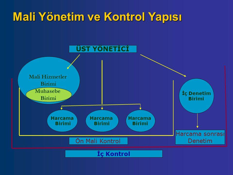 Mali Yönetim ve Kontrol Yapısı