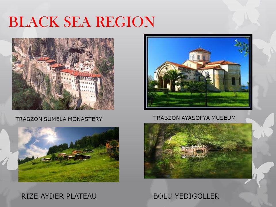 BLACK SEA REGION RİZE AYDER PLATEAU BOLU YEDİGÖLLER