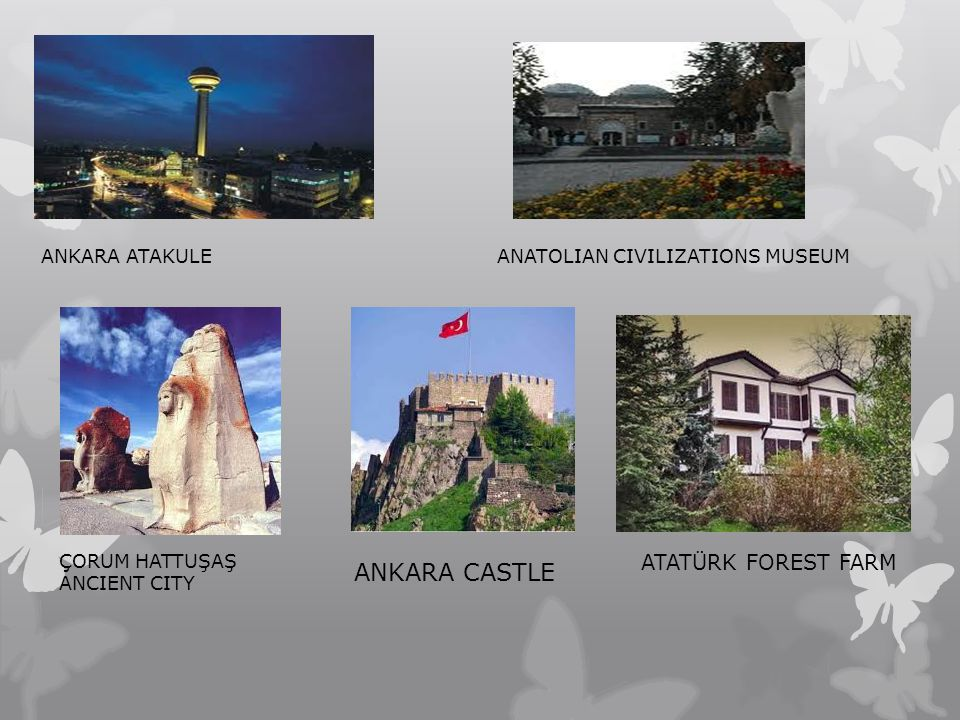 ANKARA CASTLE ATATÜRK FOREST FARM ANKARA ATAKULE