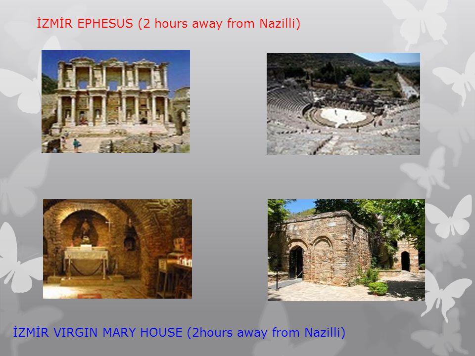 İZMİR EPHESUS (2 hours away from Nazilli)