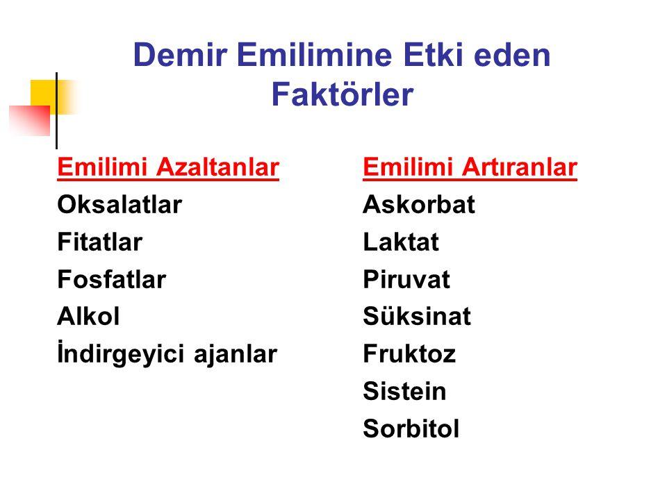 Demir Emilimine Etki eden Faktörler