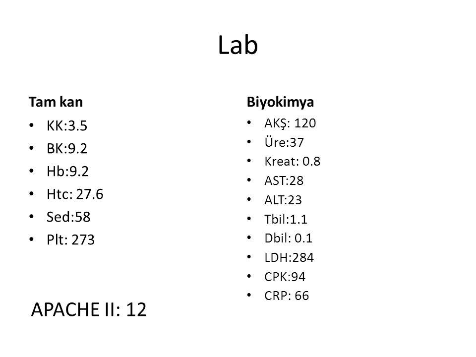 Lab APACHE II: 12 Tam kan Biyokimya KK:3.5 BK:9.2 Hb:9.2 Htc: 27.6