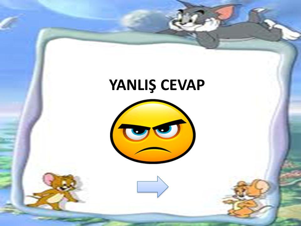 YANLIŞ CEVAP