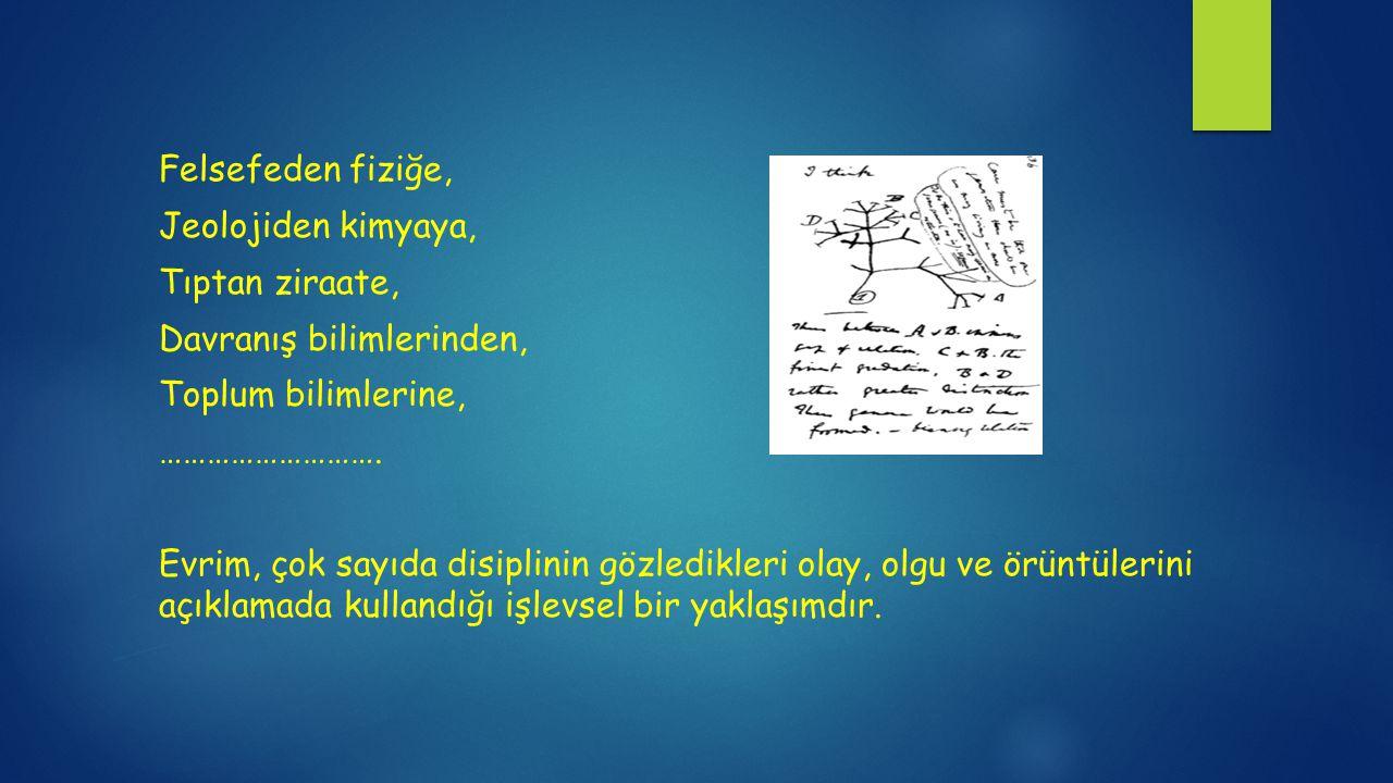 Felsefeden fiziğe, Jeolojiden kimyaya, Tıptan ziraate, Davranış bilimlerinden, Toplum bilimlerine, ……………………….