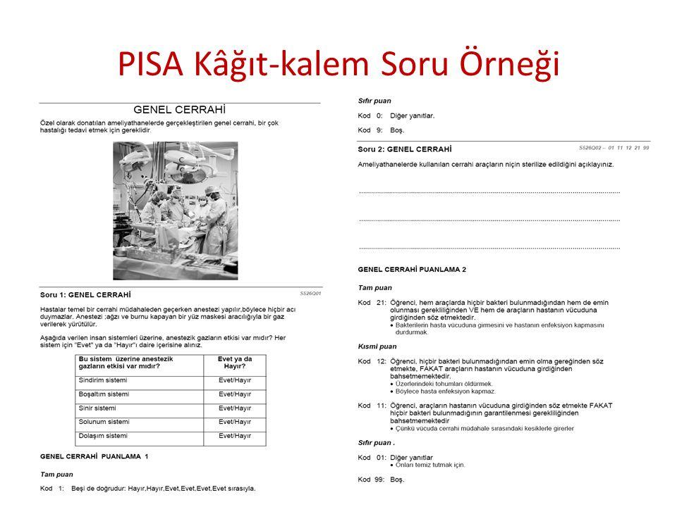 PISA Kâğıt-kalem Soru Örneği