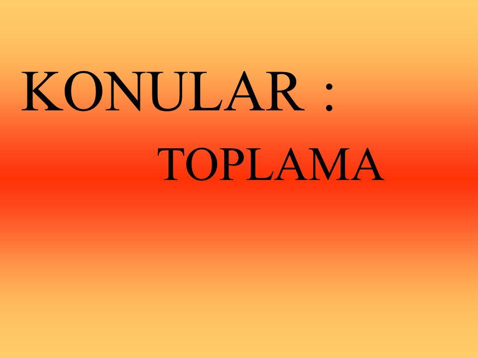 KONULAR : TOPLAMA
