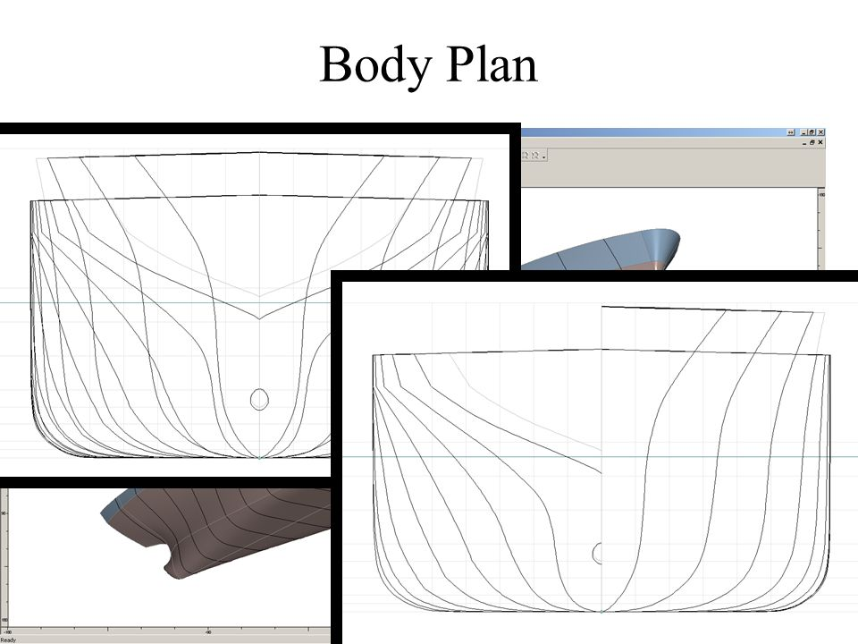 Body Plan