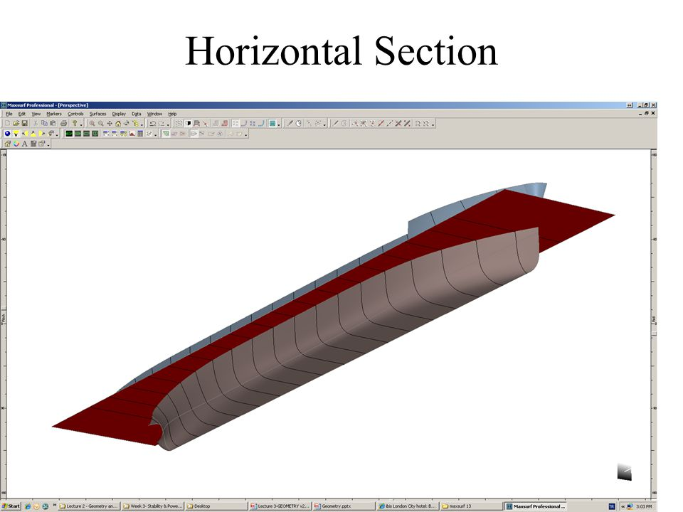 Horizontal Section