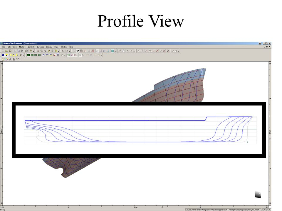 Profile View