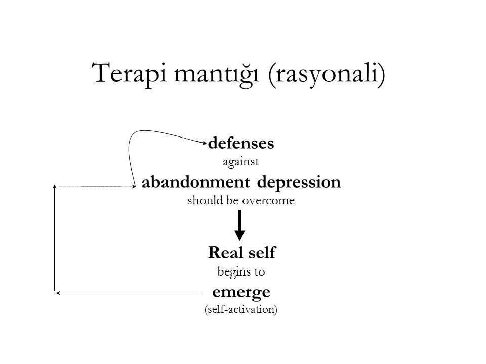 Terapi mantığı (rasyonali)
