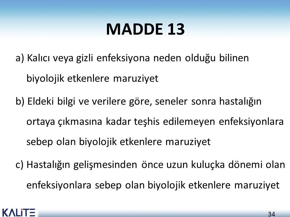 MADDE 13