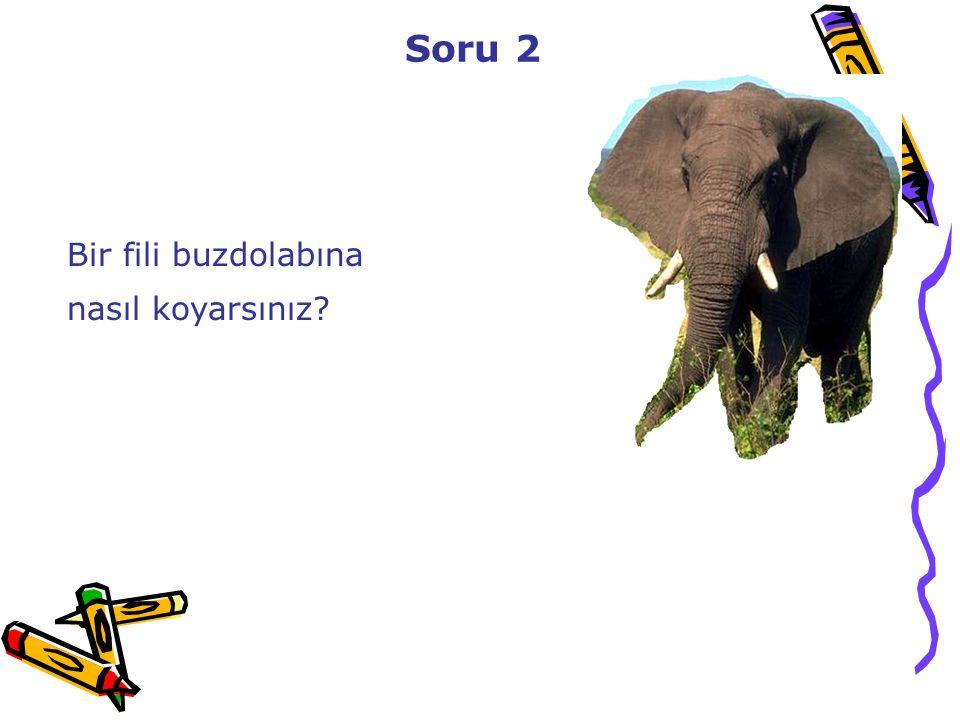 Soru 2 Bir fili buzdolabına nasıl koyarsınız 48