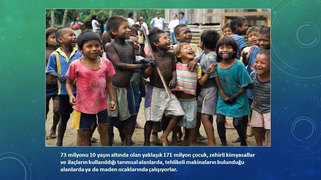 73 milyonu 10 yaşın altında olan yaklaşık 171 milyon çocuk, zehirli kimyasallar