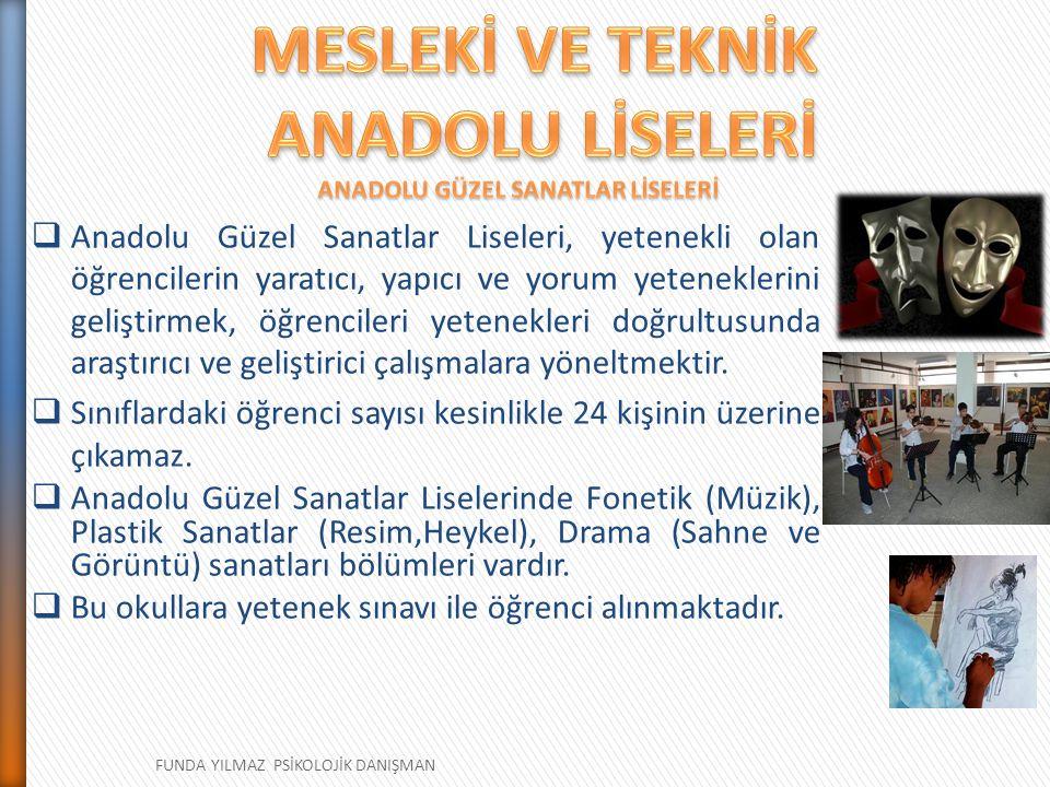 ANADOLU GÜZEL SANATLAR LİSELERİ