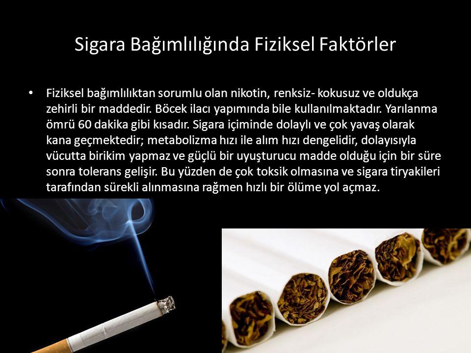Sigara Bağımlılığında Fiziksel Faktörler