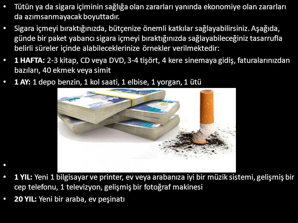 Tütün ya da sigara içiminin sağlığa olan zararları yanında ekonomiye olan zararları da azımsanmayacak boyuttadır.