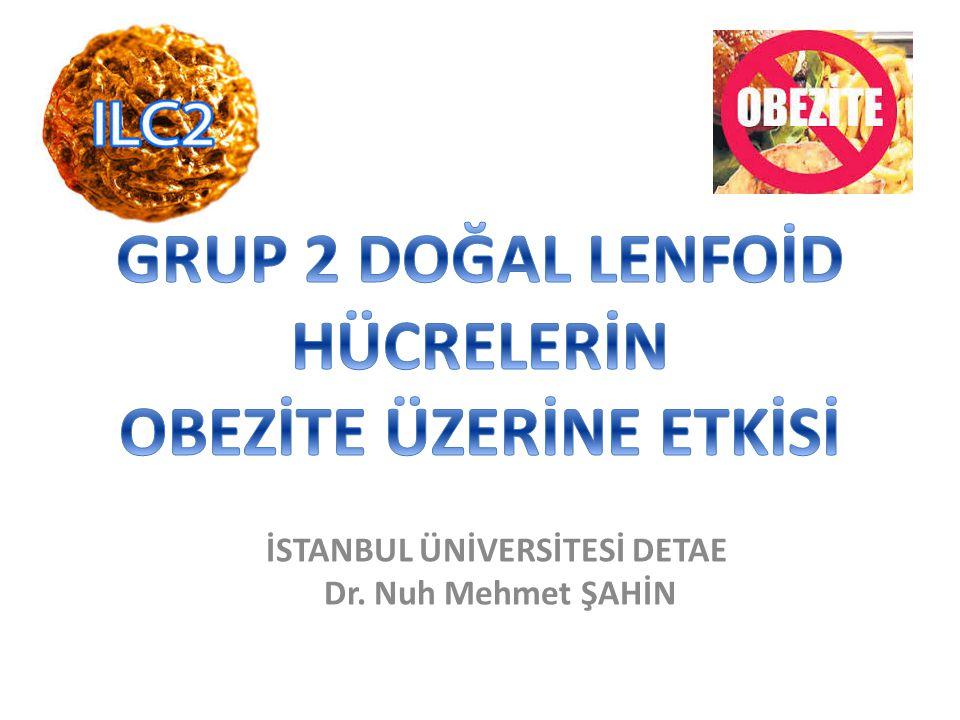 İSTANBUL ÜNİVERSİTESİ DETAE Dr. Nuh Mehmet ŞAHİN