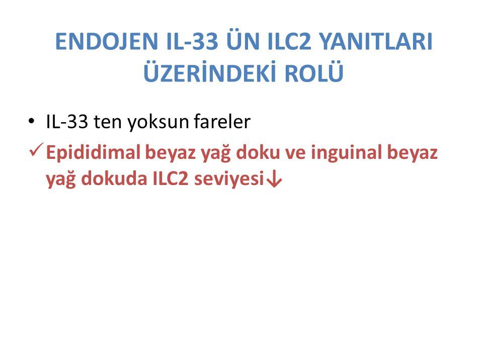 ENDOJEN IL-33 ÜN ILC2 YANITLARI ÜZERİNDEKİ ROLÜ