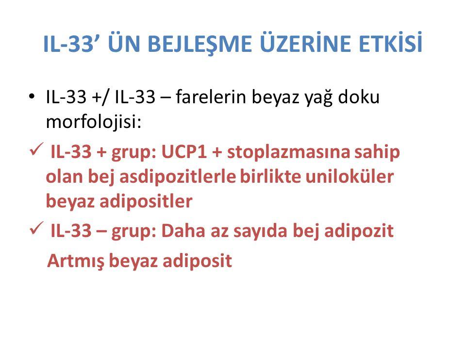 IL-33' ÜN BEJLEŞME ÜZERİNE ETKİSİ