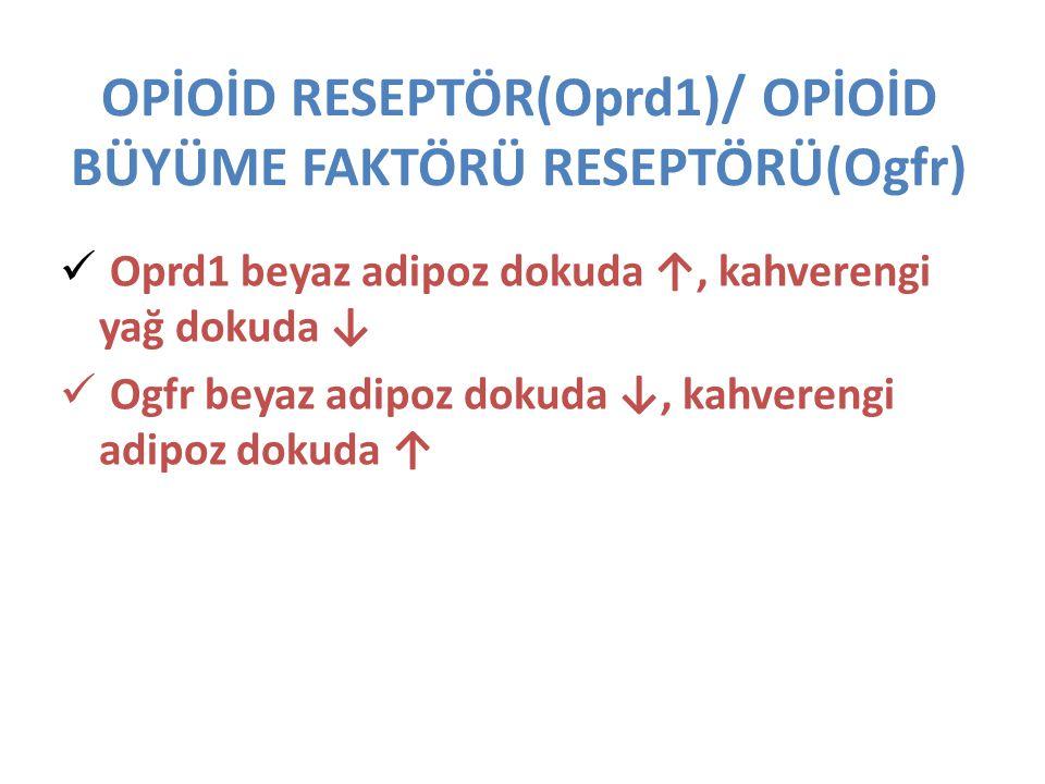 OPİOİD RESEPTÖR(Oprd1)/ OPİOİD BÜYÜME FAKTÖRÜ RESEPTÖRÜ(Ogfr)