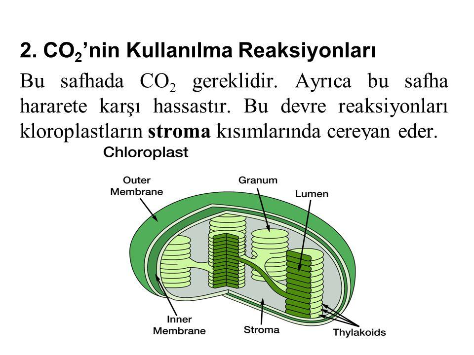 2. CO2'nin Kullanılma Reaksiyonları