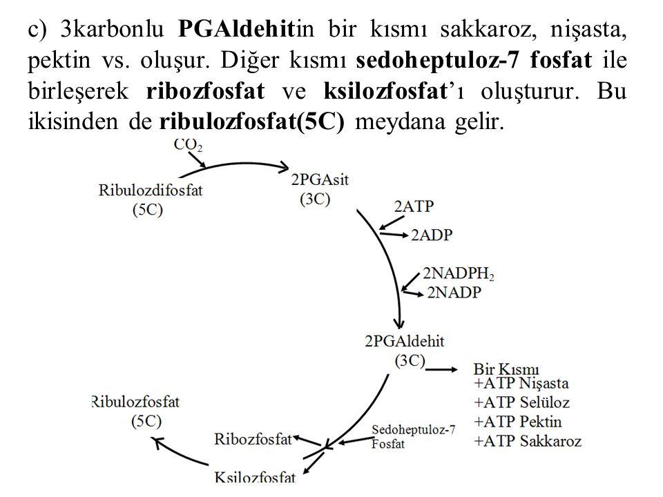 c) 3karbonlu PGAldehitin bir kısmı sakkaroz, nişasta, pektin vs.