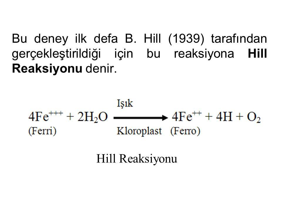 Bu deney ilk defa B. Hill (1939) tarafından gerçekleştirildiği için bu reaksiyona Hill Reaksiyonu denir.