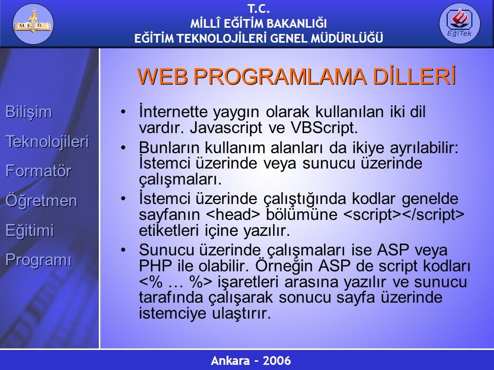 WEB PROGRAMLAMA DİLLERİ