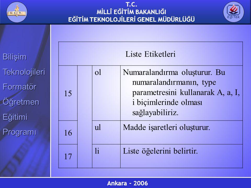 Liste Etiketleri 15. ol.