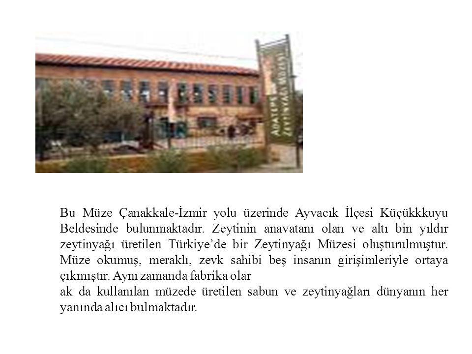 Bu Müze Çanakkale-İzmir yolu üzerinde Ayvacık İlçesi Küçükkkuyu Beldesinde bulunmaktadır. Zeytinin anavatanı olan ve altı bin yıldır zeytinyağı üretilen Türkiye'de bir Zeytinyağı Müzesi oluşturulmuştur. Müze okumuş, meraklı, zevk sahibi beş insanın girişimleriyle ortaya çıkmıştır. Aynı zamanda fabrika olar