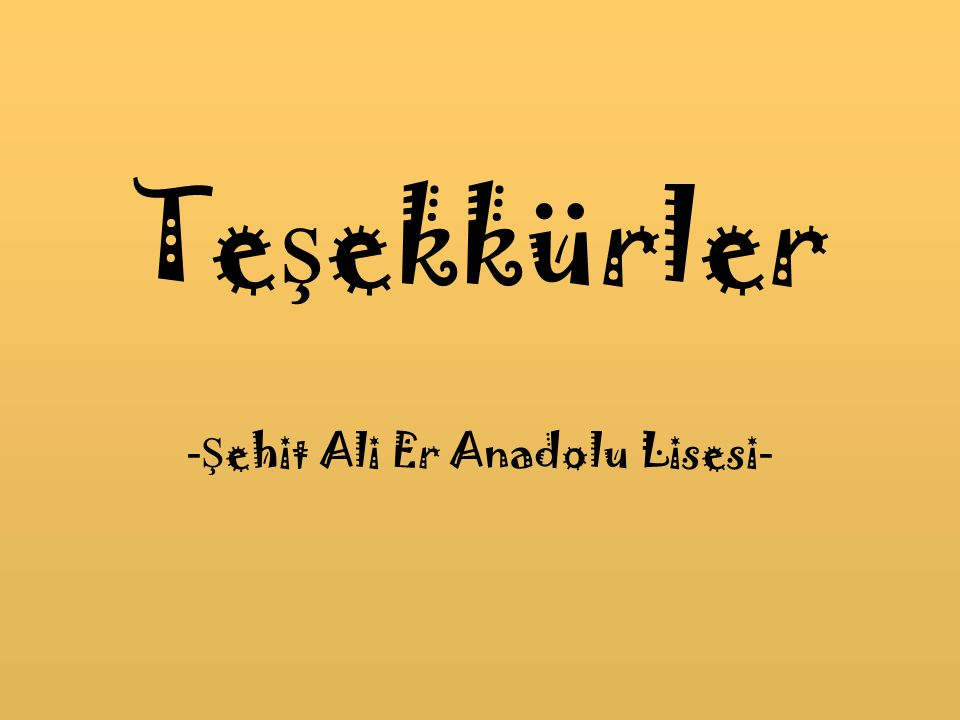 -Şehit Ali Er Anadolu Lisesi-