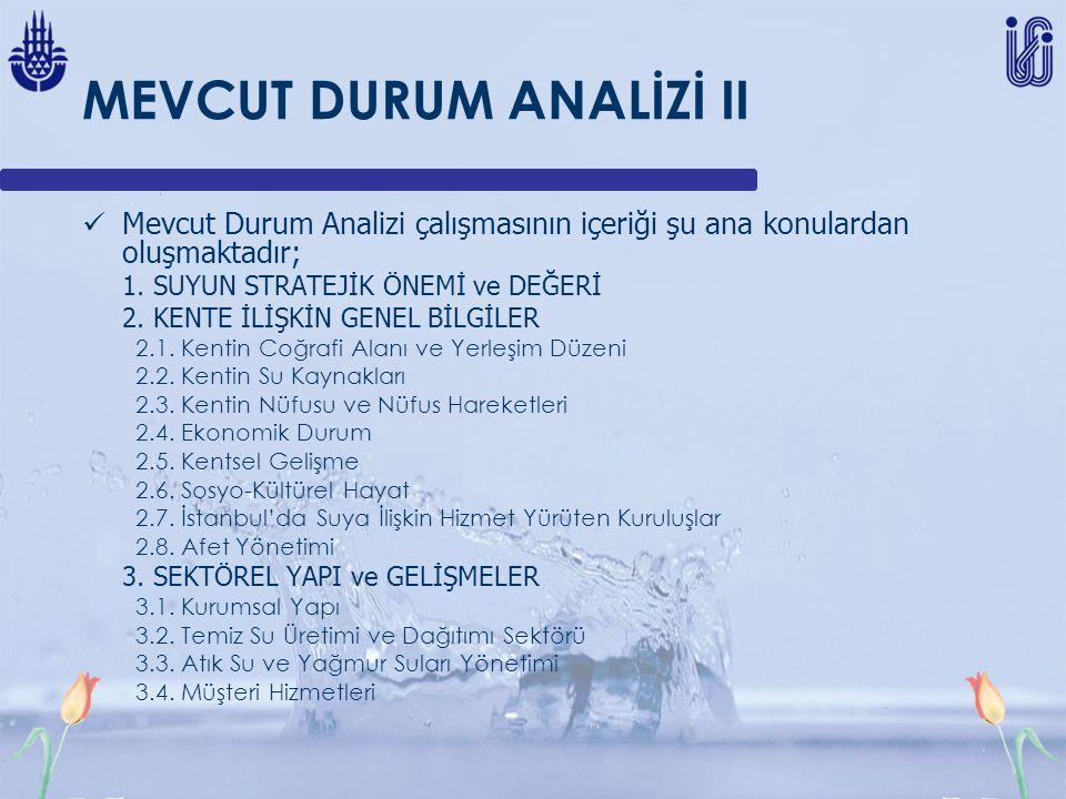 MEVCUT DURUM ANALİZİ II