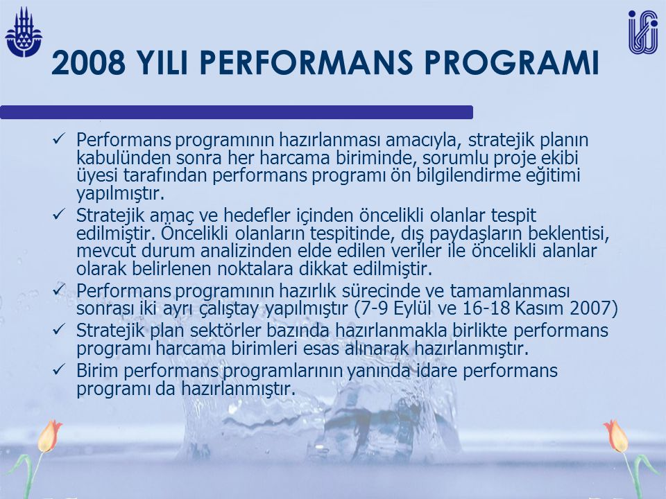 2008 YILI PERFORMANS PROGRAMI
