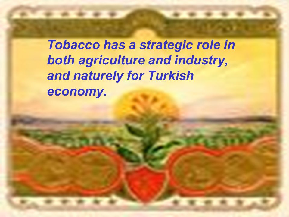 Tobacco has a strategic role in both agriculture and industry, and naturely for Turkish economy.