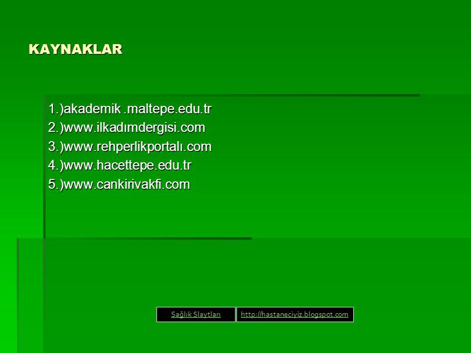 1.)akademik .maltepe.edu.tr 2.)www.ilkadımdergisi.com