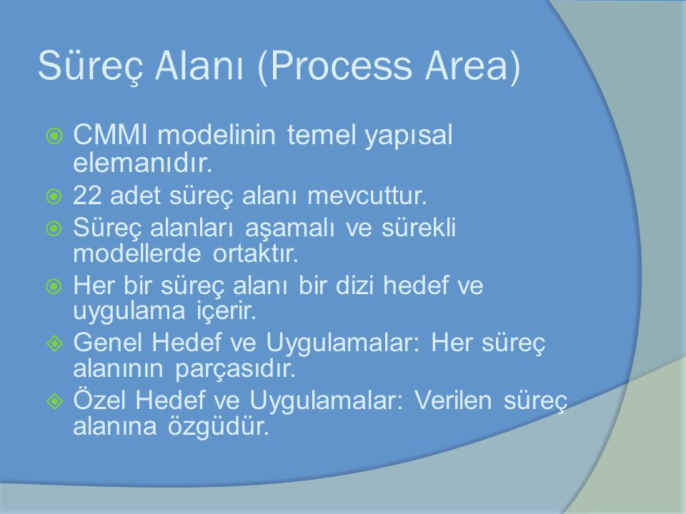 Süreç Alanı (Process Area)