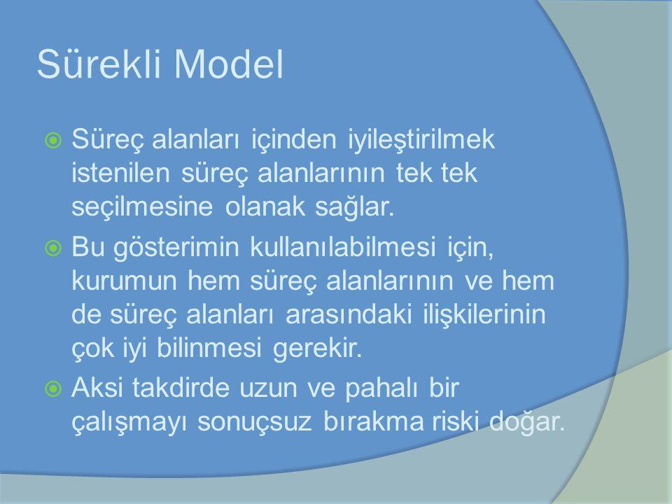 Sürekli Model Süreç alanları içinden iyileştirilmek istenilen süreç alanlarının tek tek seçilmesine olanak sağlar.