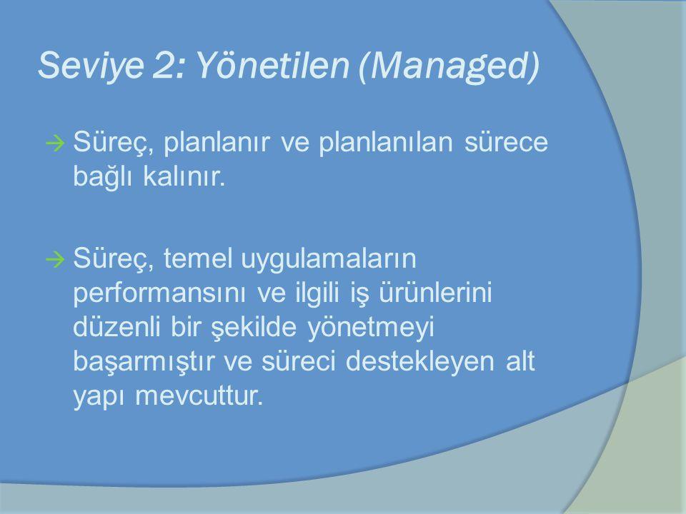 Seviye 2: Yönetilen (Managed)